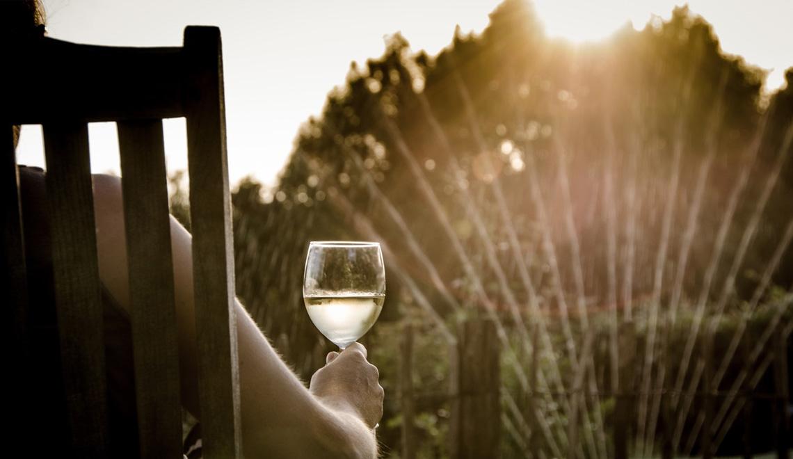 vino_comunicazionedigitale